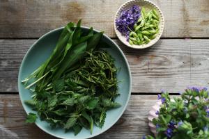 Recept za pomladno juho iz kopriv, čemaža in divjega hmelja